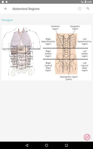 Taber's Cyclopedic (Medical) Dictionary 23rd Ed.  Screenshots 18