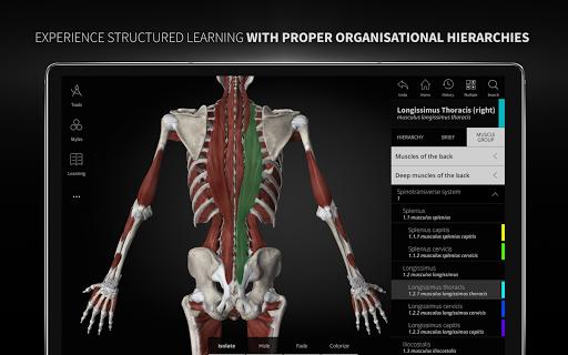 Anatomyka - 3D Human Anatomy Atlas 2.1.5 Screenshots 22