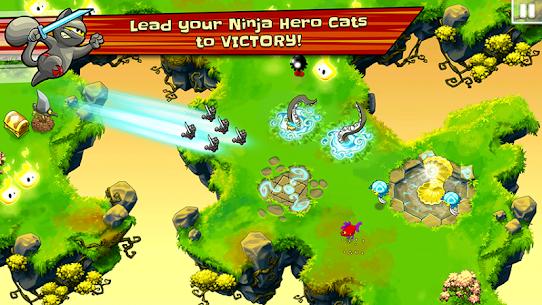 Ninja Hero Cats 1