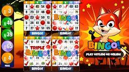 screenshot of Bingo - Play Free Bingo Games Offline or Online
