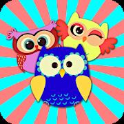 Crazy Owls Puzzle