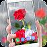 Flower Clock Live wallpaper 2021 – HD Backgrounds