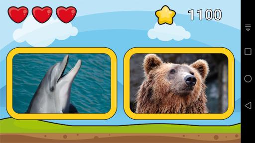 liam's zoo screenshot 3