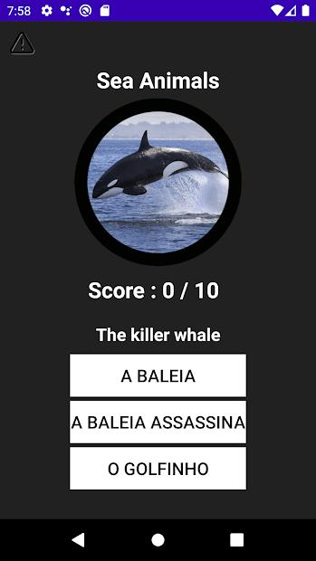 Portuguese Vocabulary screenshot 4