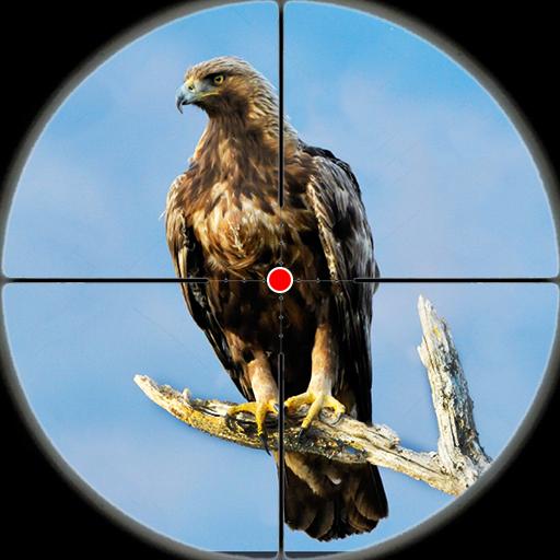 Bắn súng sa mạc bắn chim - Săn chim 2019