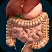 icono Órganos 3D (anatomía)