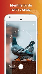 Picture Bird - Bird Identifier 1.1