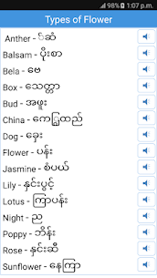 Daily Words English to Myanmar 5