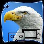 eagle SURVIVAL vr SIM