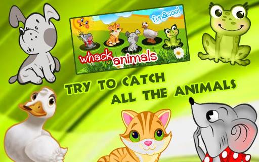 catch the animals for kids screenshot 1