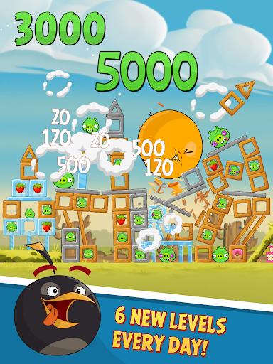 Angry Birds Classic  Screenshots 10