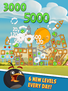 Angry Birds Classic 10