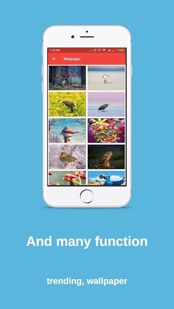 Bird finder: bird identification, bird wallpaper screenshot 4