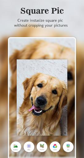 Beauty+Cam : Selfie Editing Expert & Collage Maker 1.2.9 Screenshots 8