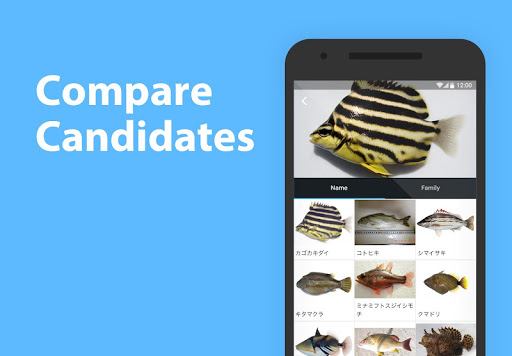 Mikke Fish ID android2mod screenshots 2
