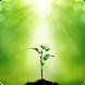 植物の識別 - Androidアプリ