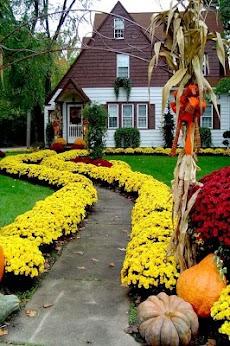 Garden Design Ideasのおすすめ画像3