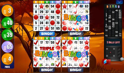 Bingo  Play Free For Pc | How To Download – (Windows 7, 8, 10, Mac) 3