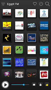 Egypt Radio Stations Online For Pc (Download On Computer & Laptop) 2