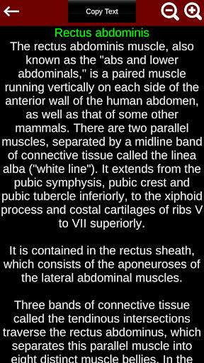 Muscular System 3D (anatomy) 2.0.8 Screenshots 8