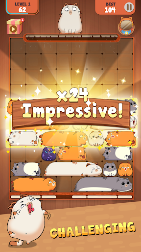 Haru Cats: Slide Block Puzzle 1.4.10 screenshots 3