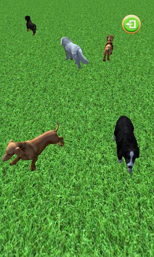 Puppy GO  screenshots 6