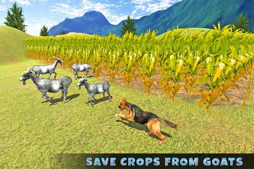 Real Dog Shephard World SIM 1.1 screenshots 9