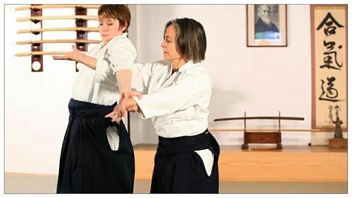 learn aikido and martial arts screenshot 3