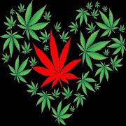 Marijuana Dating