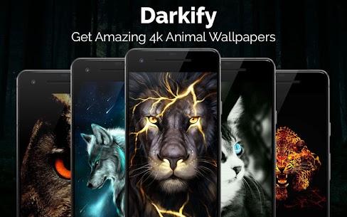 Black Wallpaper, AMOLED, Dark Background: Darkify 3