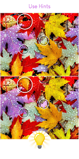 Find The Difference - Brain Differences Puzzle