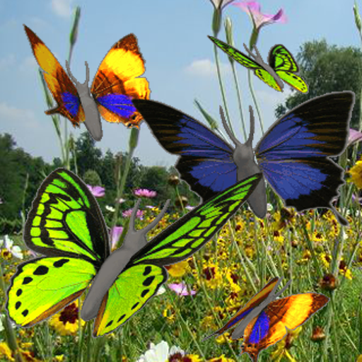 Butterfly animated color LWP! For PC Windows (7, 8, 10 and 10x) & Mac Computer