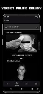 Verdict Dana Budeanu