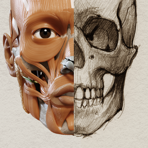 Baixar 3D Anatomy for the Artist para Android