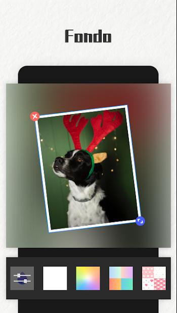 Captura 14 de Photo Collage Maker para android