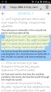 Telugu Bible Plus  For Pc (Download On Windows 7/8/10/ And Mac) 2