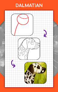 How to draw animals. Step by step drawing lessons 1.5.3 Screenshots 13