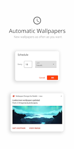 Wallpaper Changer for Reddit MOD APK (Pro Unlock) Download 1
