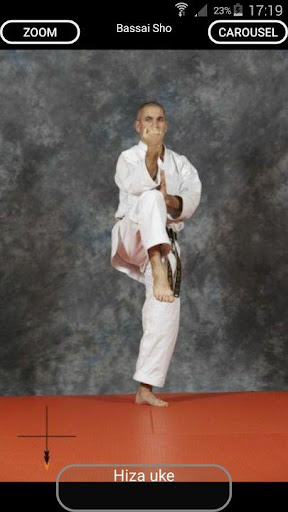 karate shito-ryu 8 screenshot 2