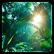 ジャングルライブ壁紙