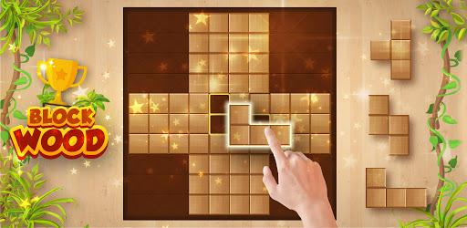 Wood Block Puzzle - Free Woody Block Puzzle Game  screenshots 19