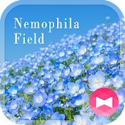 Beautiful Wallpaper Nemophila Field Theme