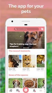 Midoog - Your pet's app