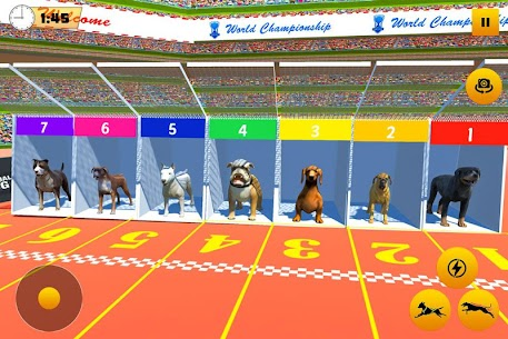 Dog Race Sim 2019: Dog Racing Games 1