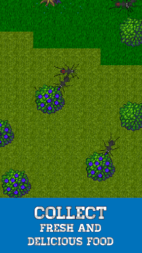 Ant Evolution - ant colony and terrarium simulator 1.4.0 screenshots 2