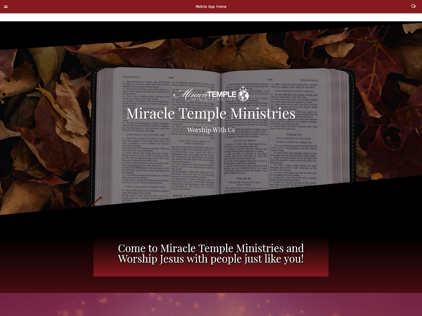Miracle Temple Ministries screenshot 2