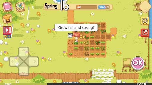 The Farm : Sassy Princess  screenshots 2