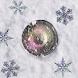 冬カメラ (Fuyu Camera) - 年末年始、クリスマス