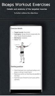 Biceps Workout Exercises