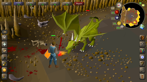 Old School RuneScape 195.1 screenshots 4